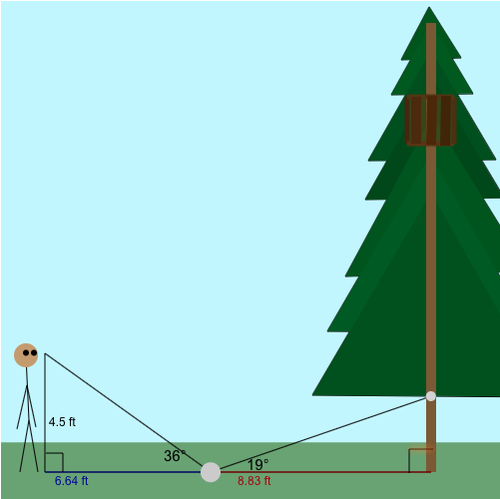 Indirect Measurement: Treehouse measurement