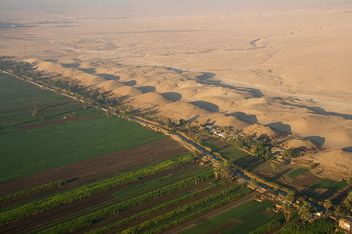 Image of the fertile Nile floodplain
