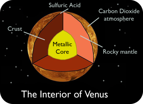 Venus's interior is similar to Earth's