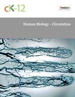 Human Biology - Circulation