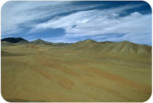 The Atacama Desert is an example of a biome