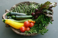 Food and Nutrients