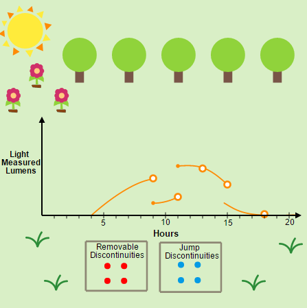 Discrete and Continuous Functions: Measuring Light in a Garden