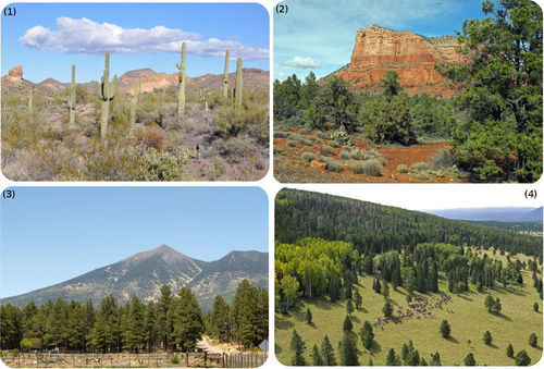 Pictures of the Lower Sonoran, Upper Sonoran, Transition, Lower Boreal, and Upper Boreal life zones