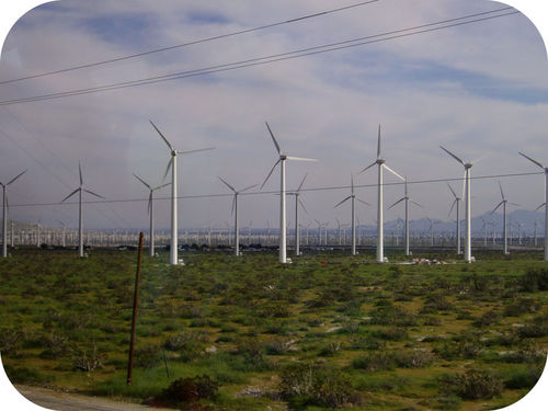 Wind turbines provide electricity