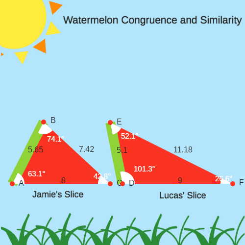 Watermelon Congruence vs Similarity