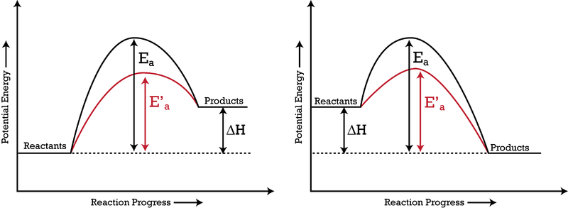 activation energy barrier rate of reaction