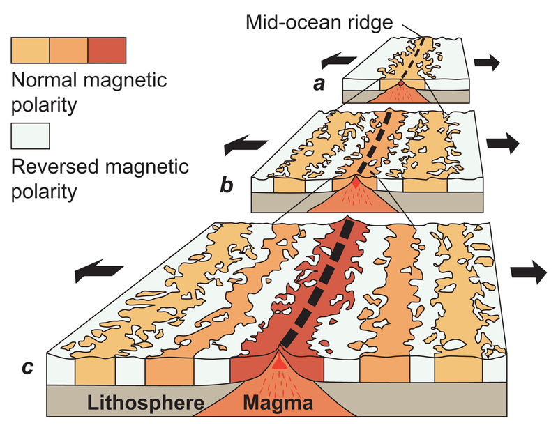 magnetic reversals on the seafloor