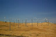 Picture of windmills in Altamont Pass