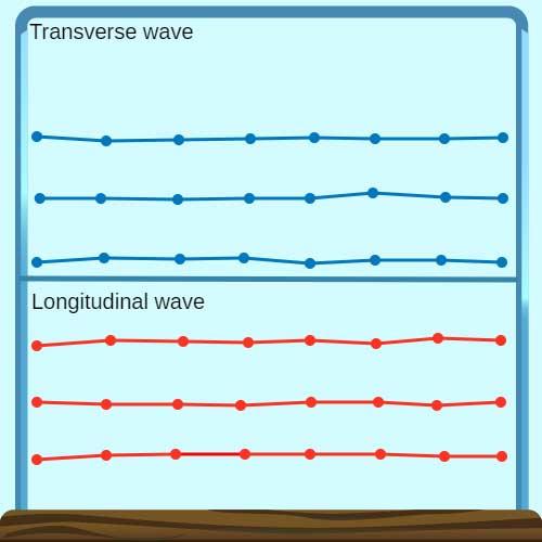 Longitudinal Wave | CK-12 Foundation