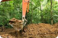 Laterite soils, which are found beneath rainforests, are not good for growing crops