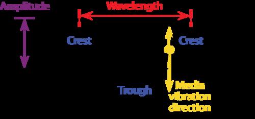 Transverse and Longitudinal Waves, Speed of Wave Motion | CK