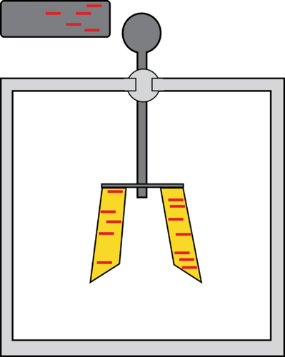 Electroscope that has been negatively charged by conduction