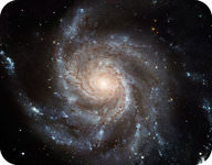 The Pinwheel Galaxy has prominent arms