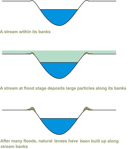 How natural levees form from floods