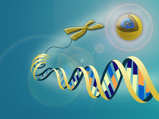 Genética moderna | CK-12 Foundation
