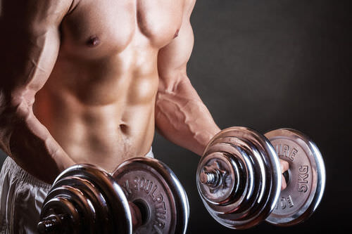 Testosterone, the main sex hormone in males, allows men to build larger muscles than women