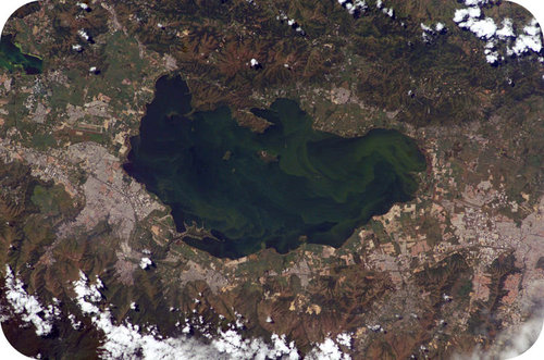 This lake in Venezuela has algae blooms that will eventually kill all life in the lake