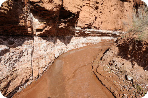 A stream in the desert erodes the cliff face