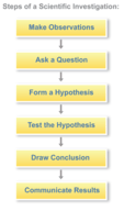 Steps of a scientific investigation