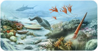 Life During the Paleozoic