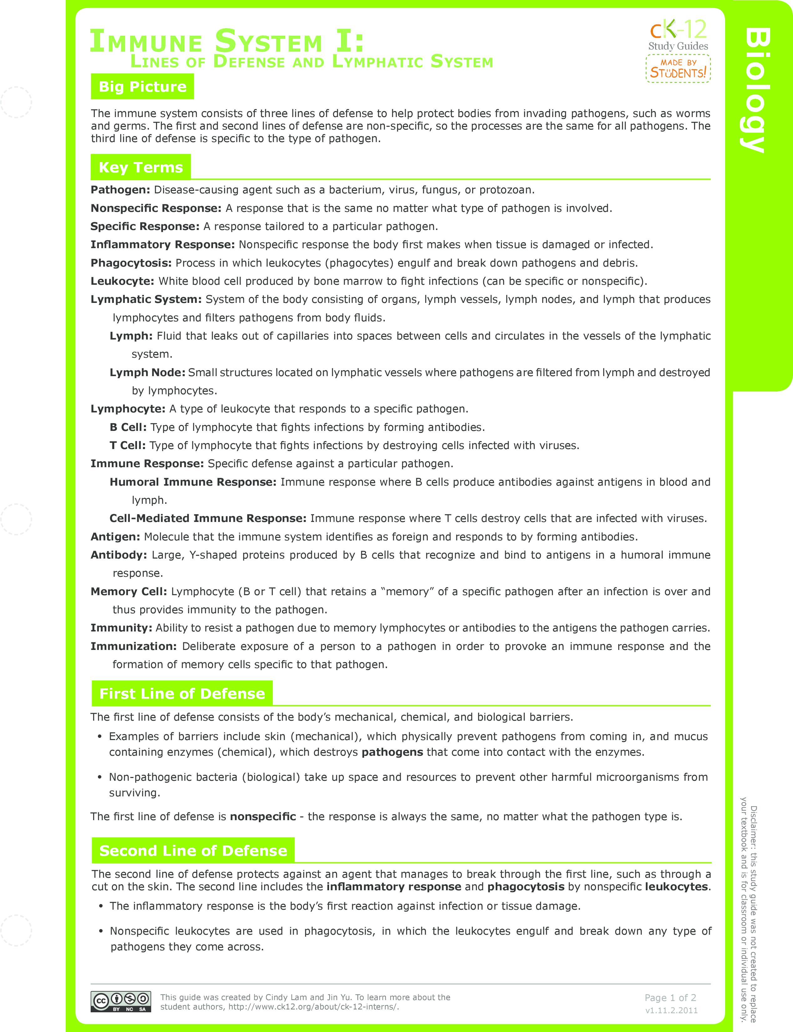 Innate Immune System Ck 12 Foundation