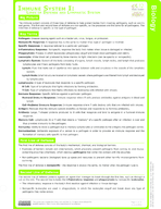 Immune System Part I Study Guide