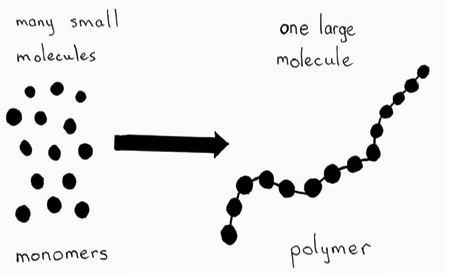 Macromolecules- what makes up all life
