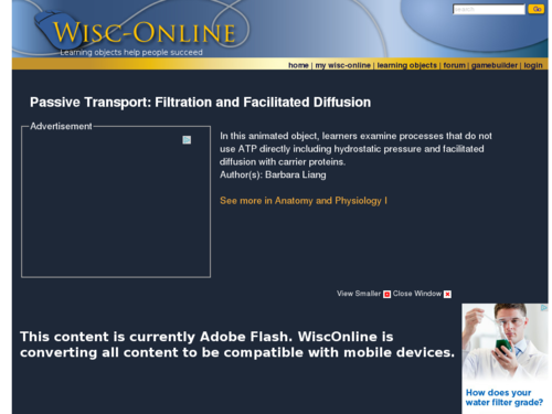 Passive Transport - Filtration and Facilitated Diffusion