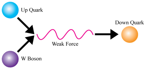 Diagram of weak nuclear force