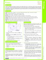 Fungi Study Guide