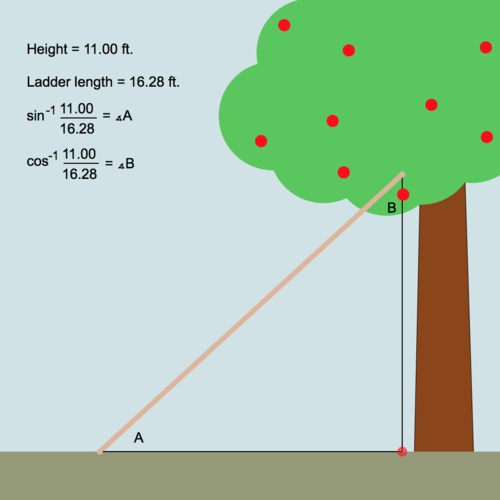 Definition of the Inverse of Trigonometric Ratios: Apple Picking Ladder