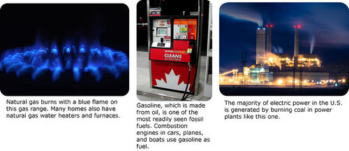 Various types fossil fuels
