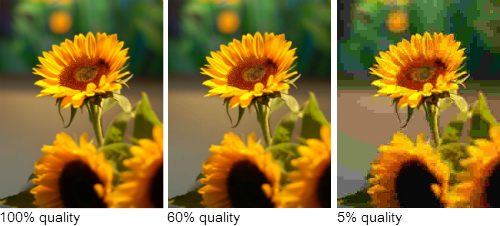 comparison of photo quality/compression