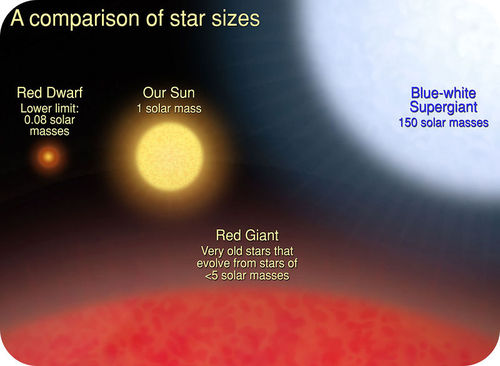 This diagram compares the relative sizes of stars of different masses