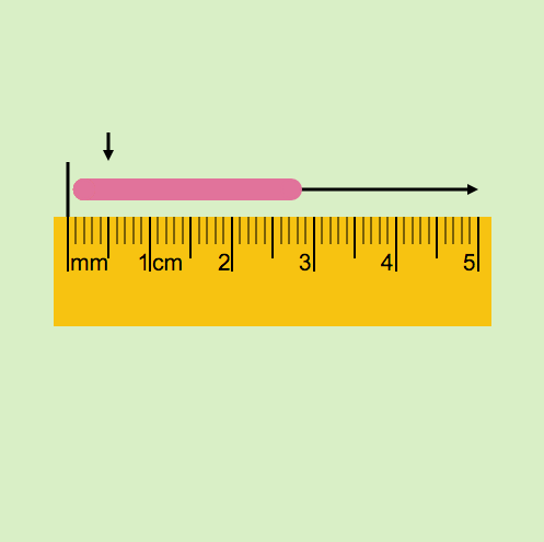 Metric System: Stretchy Worm