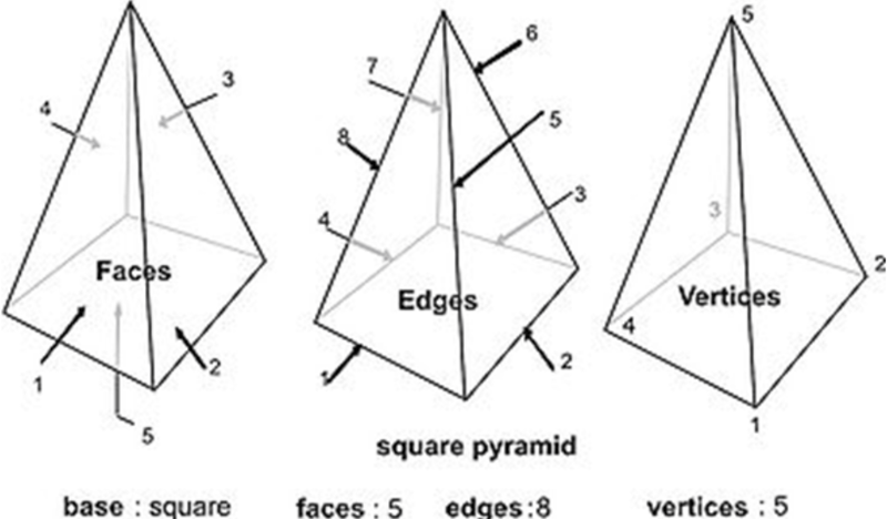 Area of Nets Nets to Prisms – Faces Edges and Vertices Worksheet