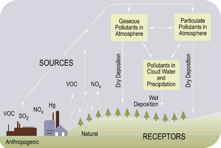 Diagram of how acid rain is formed