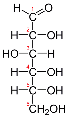 Fischer projection of glucose