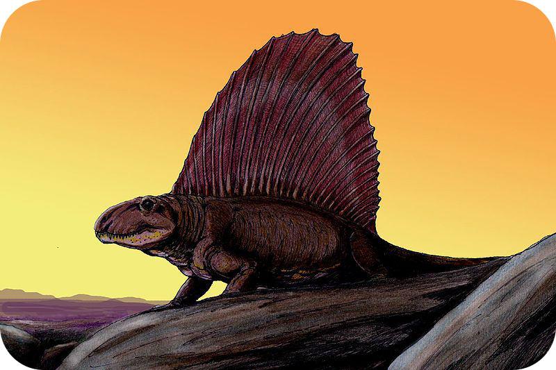 Teaching History of Mesozoic Life