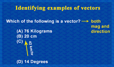 Classification of Vectors and Scalars - Example 2