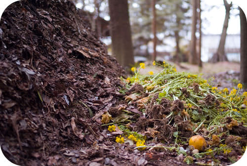 Organic material can be added to soil to help increase its fertility