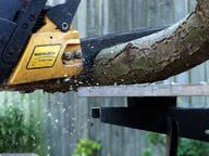 Wood being cut by a chainsaw