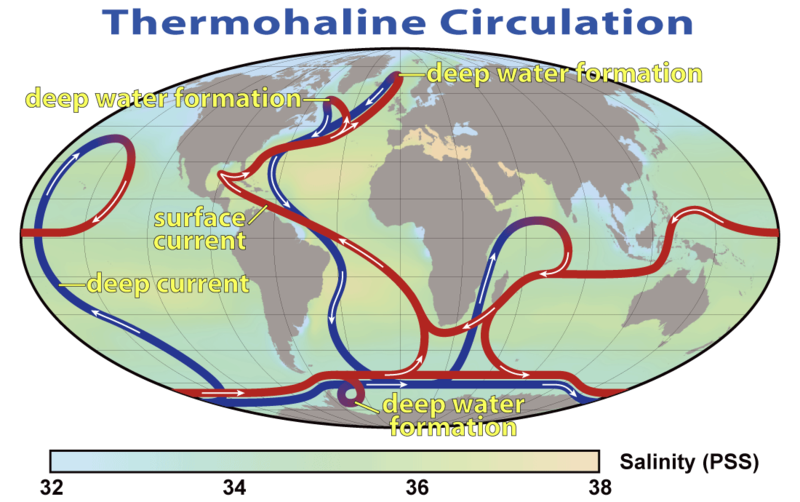 Map of Thermohaline Circulation