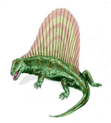 Dimetrodon illustration: pelycosaur