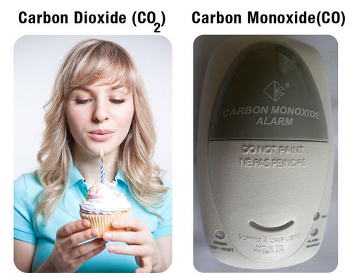 Carbon dioxide and carbon monoxide have very different properties