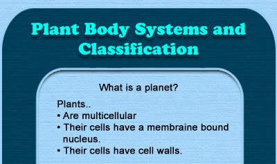 Plant Body Systems and Classification