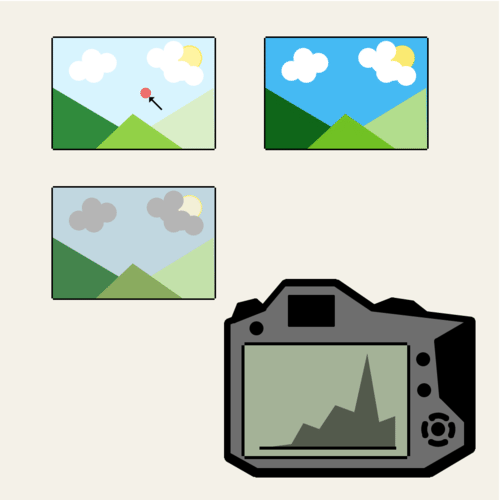 Stem-and-Leaf Plots and Histograms: Digital Photography