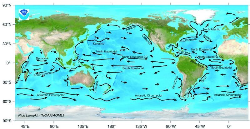 Map of the major surface ocean currents