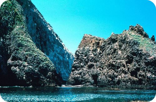 Santa Cruz Island has a diverse set of habitats